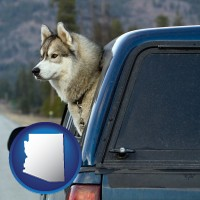 arizona map icon and a truck cap and a Siberian husky