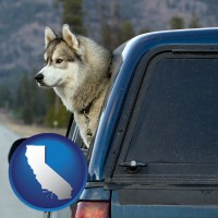 california map icon and a truck cap and a Siberian husky