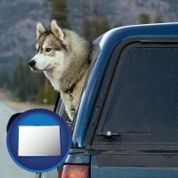 colorado a truck cap and a Siberian husky