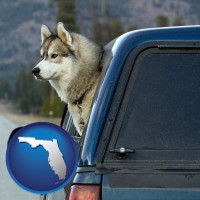 florida map icon and a truck cap and a Siberian husky