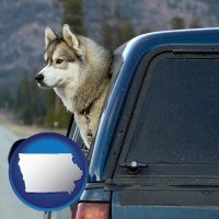 iowa map icon and a truck cap and a Siberian husky