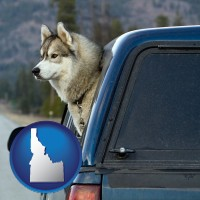 idaho a truck cap and a Siberian husky