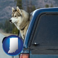 indiana map icon and a truck cap and a Siberian husky
