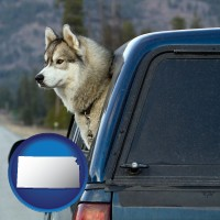 kansas a truck cap and a Siberian husky