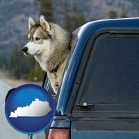 kentucky map icon and a truck cap and a Siberian husky