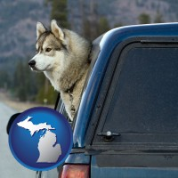 michigan map icon and a truck cap and a Siberian husky