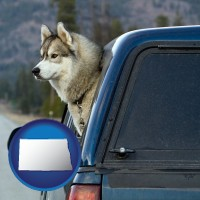 north-dakota a truck cap and a Siberian husky