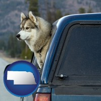 nebraska map icon and a truck cap and a Siberian husky