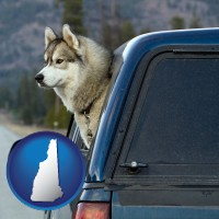 new-hampshire map icon and a truck cap and a Siberian husky