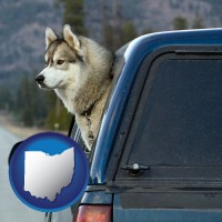 ohio map icon and a truck cap and a Siberian husky