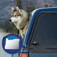oregon a truck cap and a Siberian husky