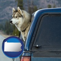 pennsylvania map icon and a truck cap and a Siberian husky