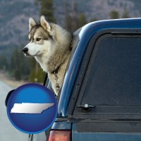 tennessee map icon and a truck cap and a Siberian husky