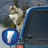 vermont a truck cap and a Siberian husky
