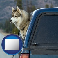 wyoming a truck cap and a Siberian husky