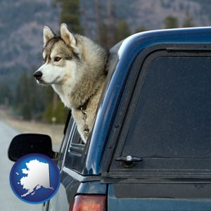 a truck cap and a Siberian husky - with Alaska icon