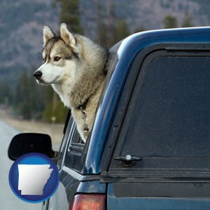 a truck cap and a Siberian husky - with Arkansas icon