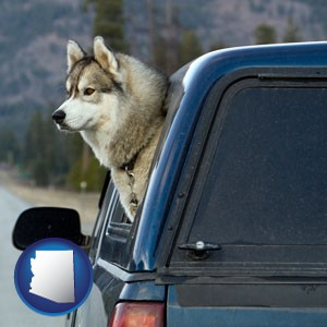 a truck cap and a Siberian husky - with Arizona icon