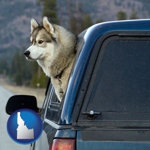 a truck cap and a Siberian husky - with Idaho icon