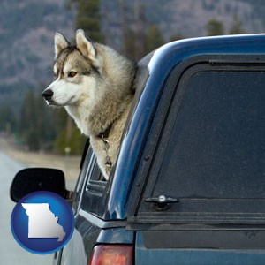 a truck cap and a Siberian husky - with Missouri icon