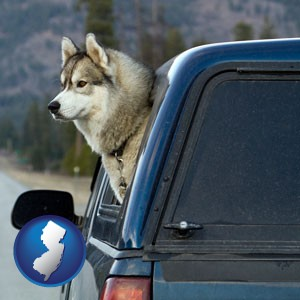 a truck cap and a Siberian husky - with New Jersey icon