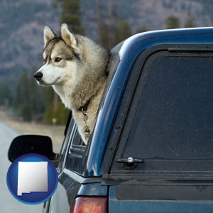 a truck cap and a Siberian husky - with New Mexico icon