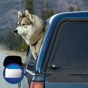 a truck cap and a Siberian husky - with Pennsylvania icon