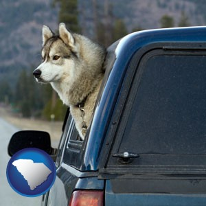 a truck cap and a Siberian husky - with South Carolina icon