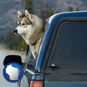 a truck cap and a Siberian husky - with Wisconsin icon