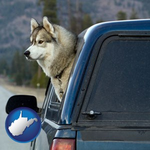 a truck cap and a Siberian husky - with West Virginia icon