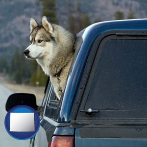 a truck cap and a Siberian husky - with Wyoming icon