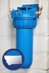 montana a water treatment filter