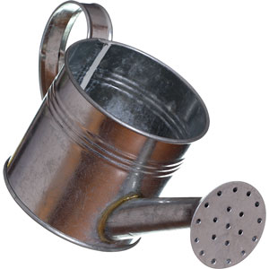 a steel watering can