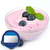 kansas blueberry yogurt with fresh blueberries