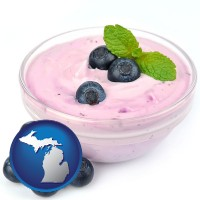 michigan blueberry yogurt with fresh blueberries