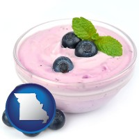 missouri blueberry yogurt with fresh blueberries