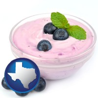 texas blueberry yogurt with fresh blueberries